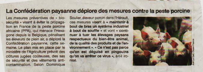 2019.11.19-OF-Peste-porcine