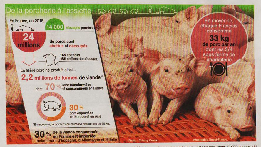 Dossier porcs Ouest France